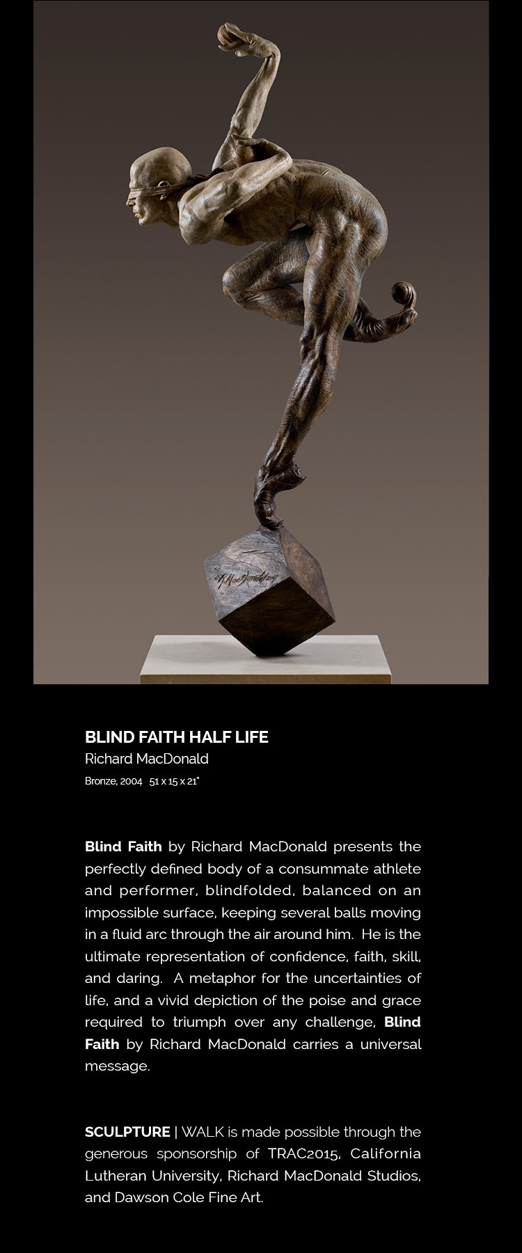 Blind Faith by Richard MacDonald